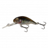 3D Goby Crank PHP