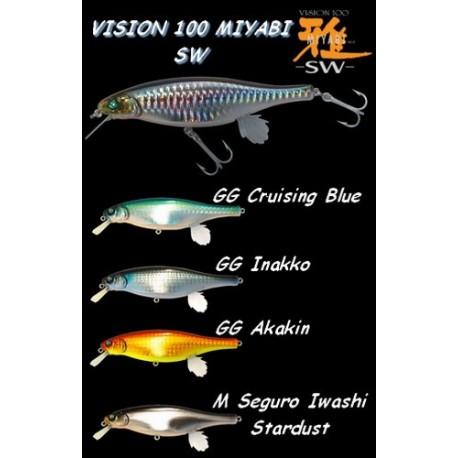 Vision 100 Miyabi