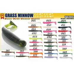 Grass Minnow
