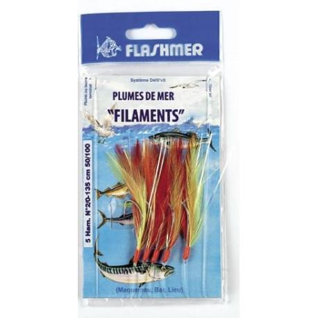 Plumes de mer filaments
