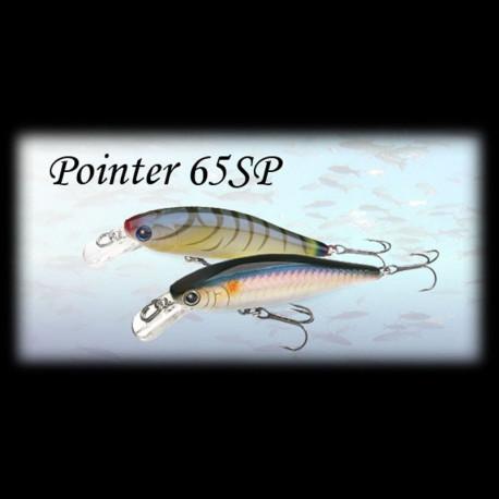 Pointer 65 sp