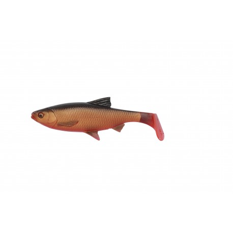 3D River roach paddletail