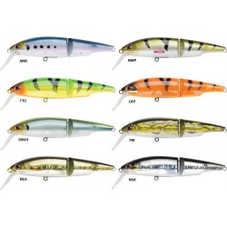 Swingtail minnow